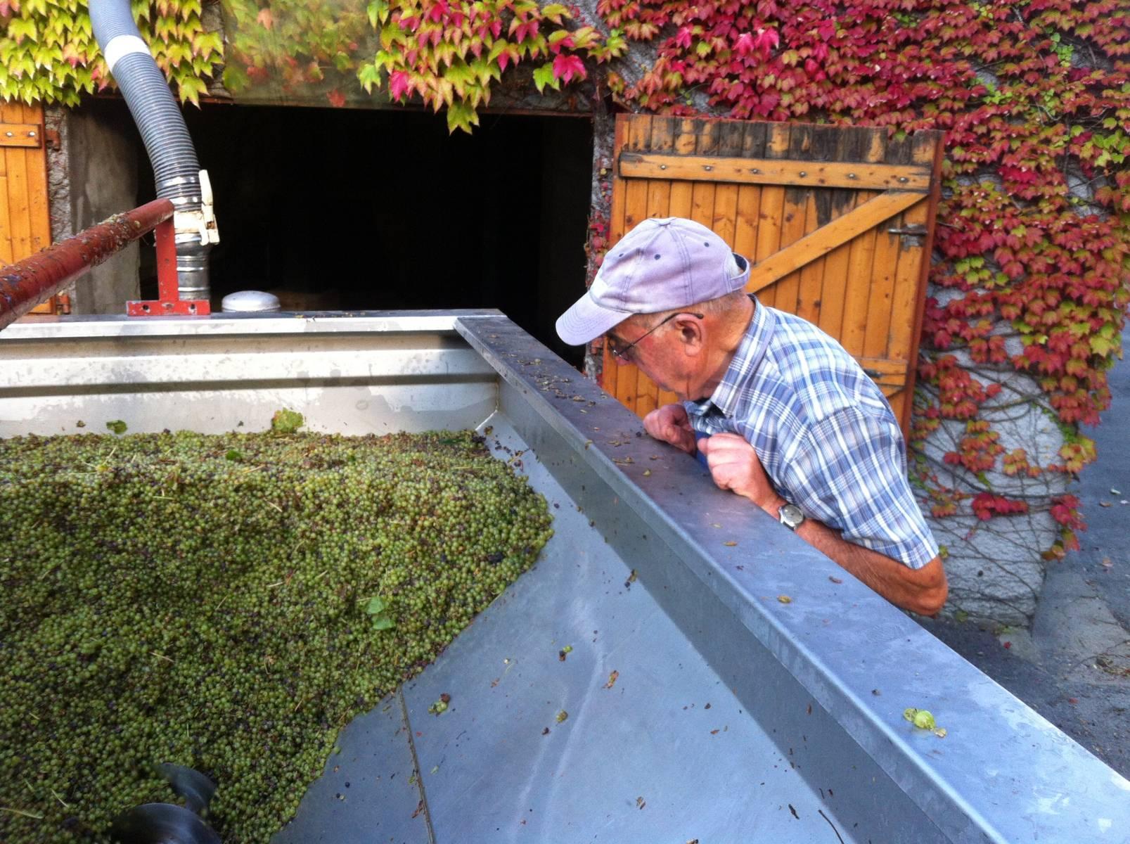 Erwan Vicet Producteur de Muscadet en sud Loire