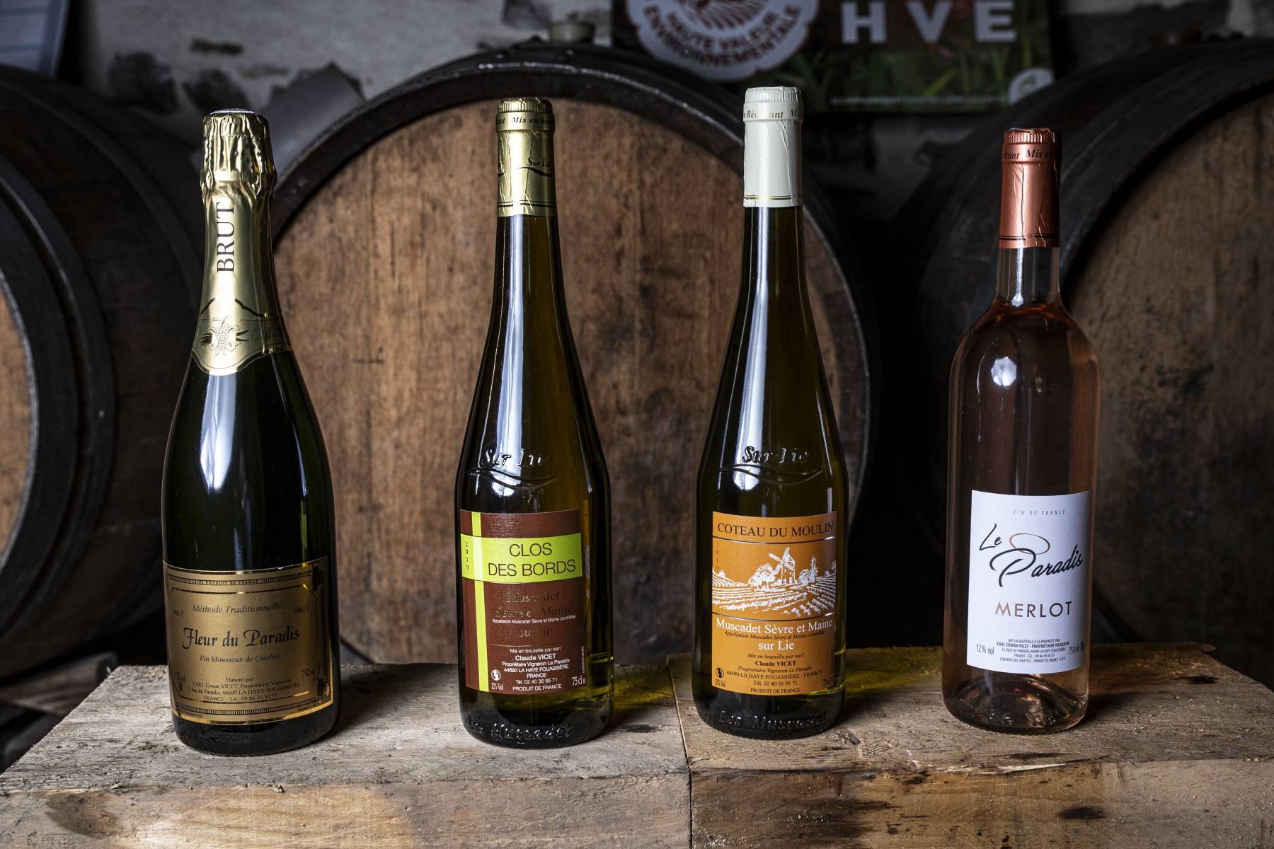 Gammes des vins blancs domaine du paradis