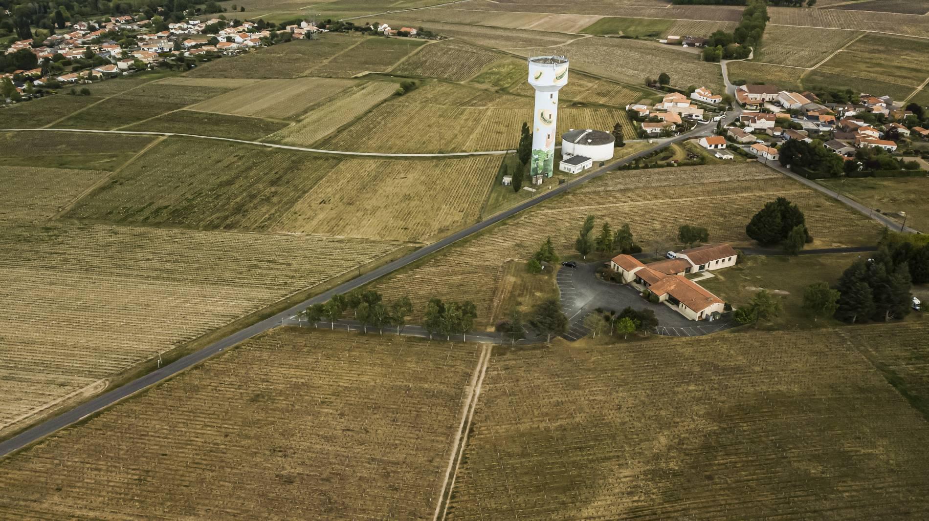 Domaine  Erwan Vicet