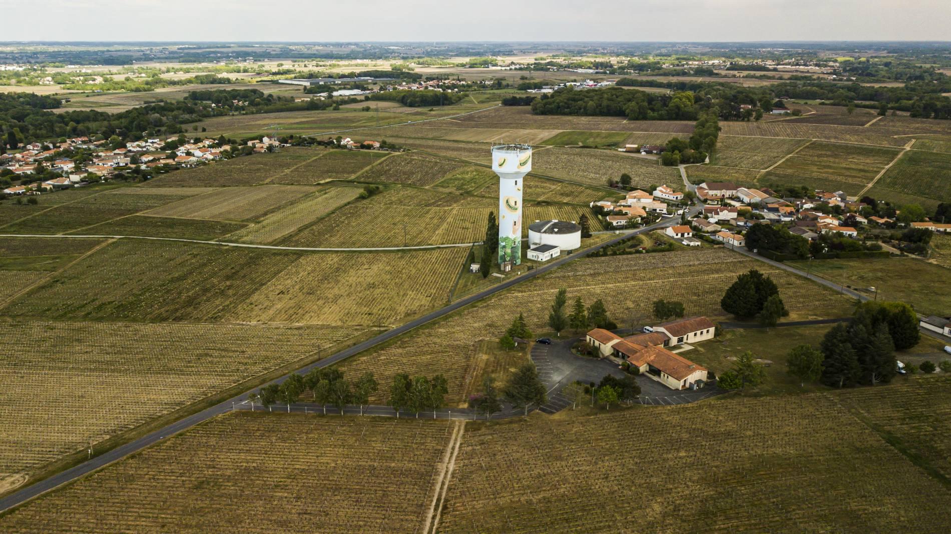 Domaine viticole à proximité de Nantes