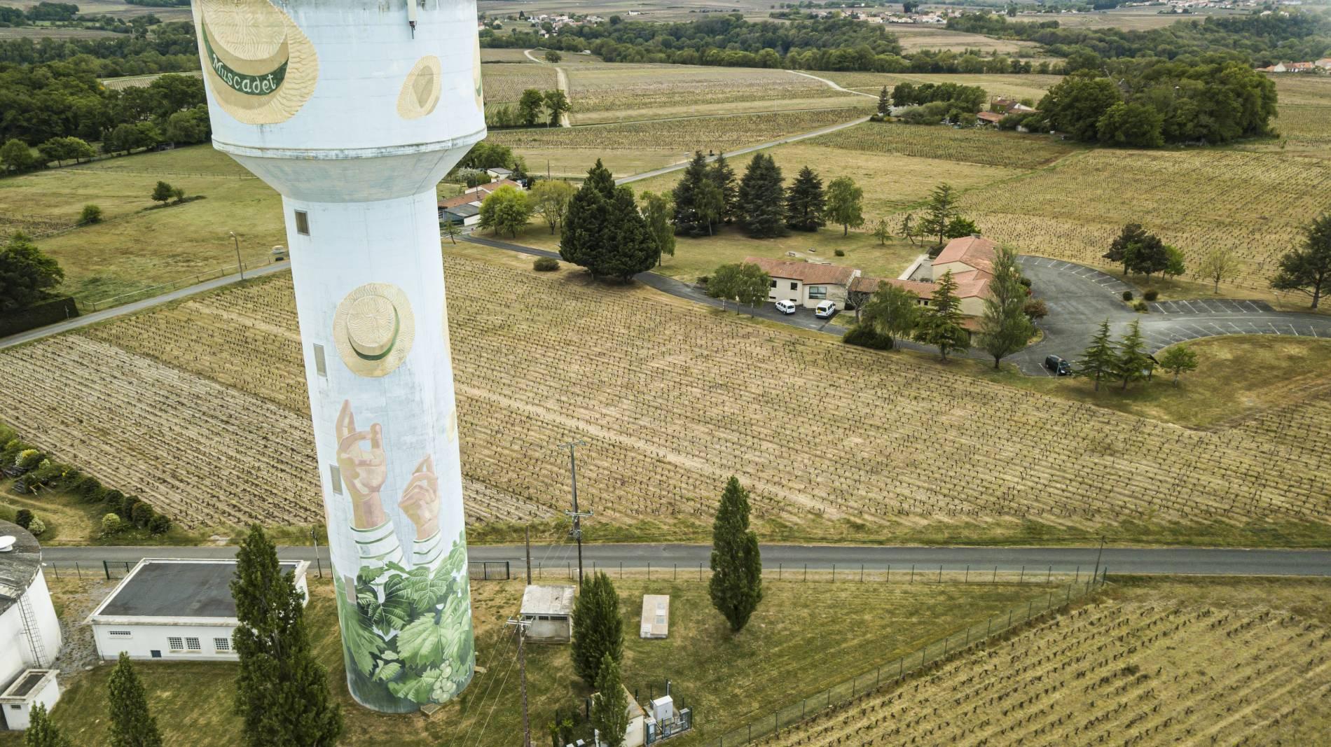 domaine du vignoble à la haye fouassiere