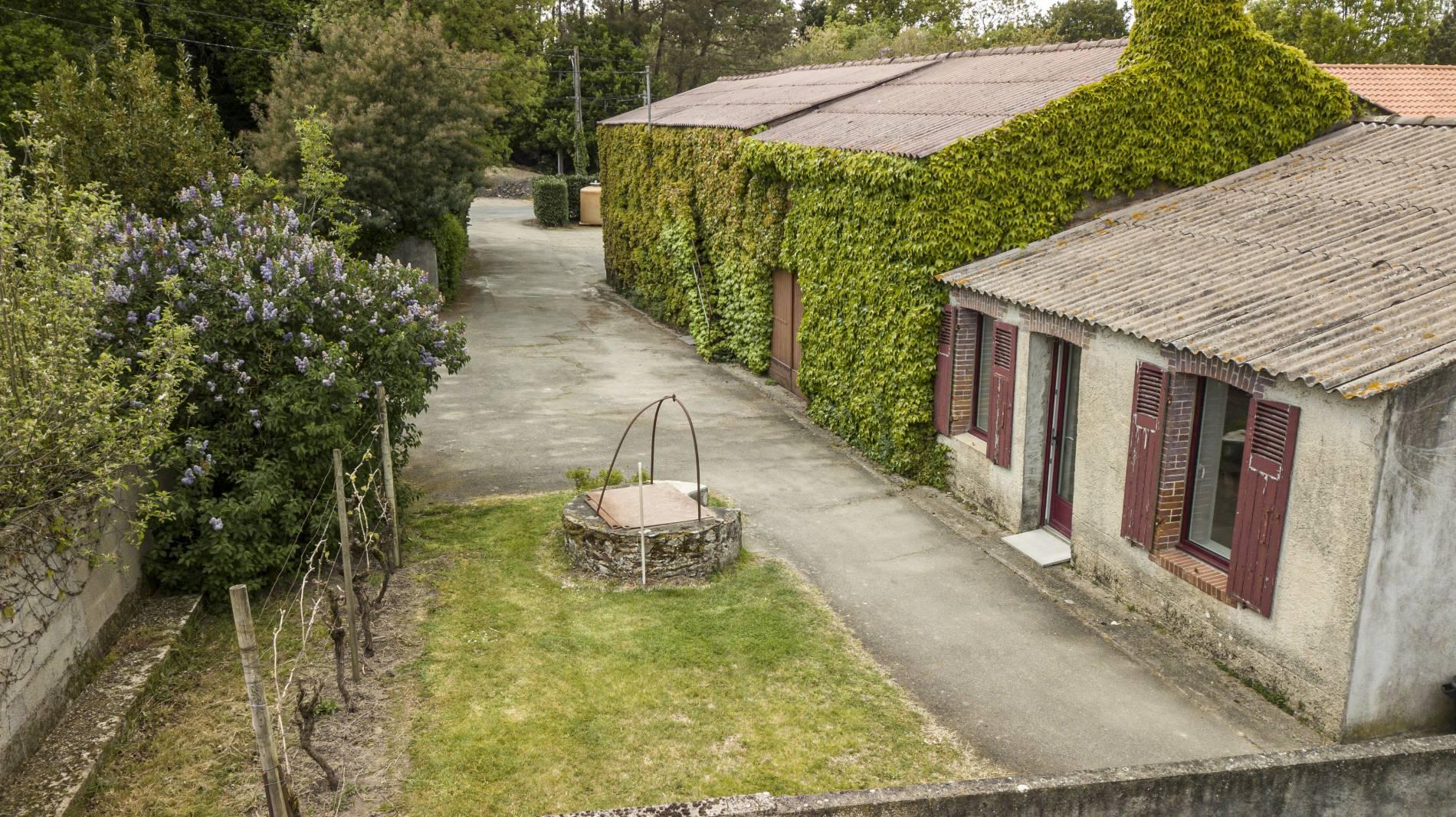 Domaine du paradis vente du Vin Chardonnay et Vin Gamay rosé